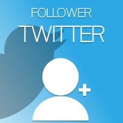 Follower per Twitter